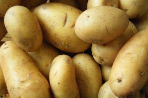 Nudelschutz! Die Kartoffelbauern müssen zahlen!