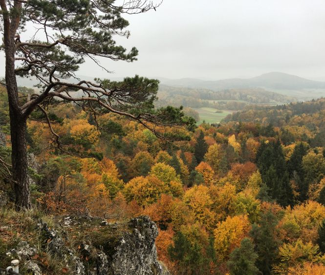 Blick in die Hersbrucker Schweiz