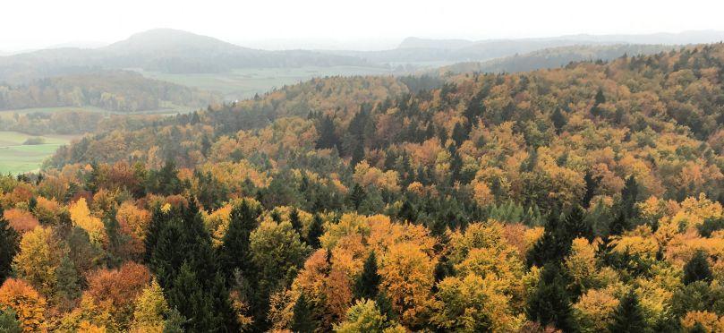 Herbstwanderungen