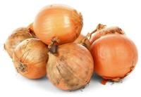 Allium cepa - Zwiebeln und Homöopathie