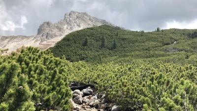 Südtirol-2018-056