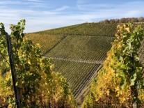 Weinfranken-2018-07