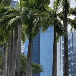 Singapur-2019-15