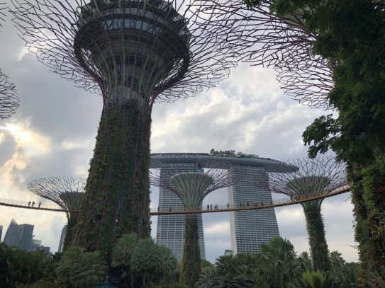 Singapur-2019-16