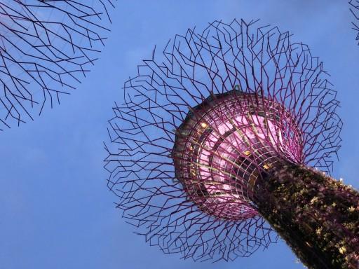 Singapur-2019-18