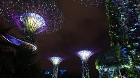 Singapur-2019-20