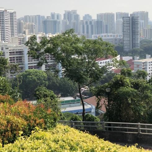 Singapur-2019-23