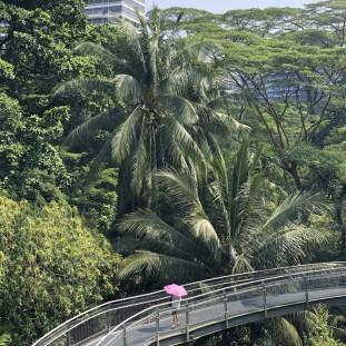 Singapur-2019-24